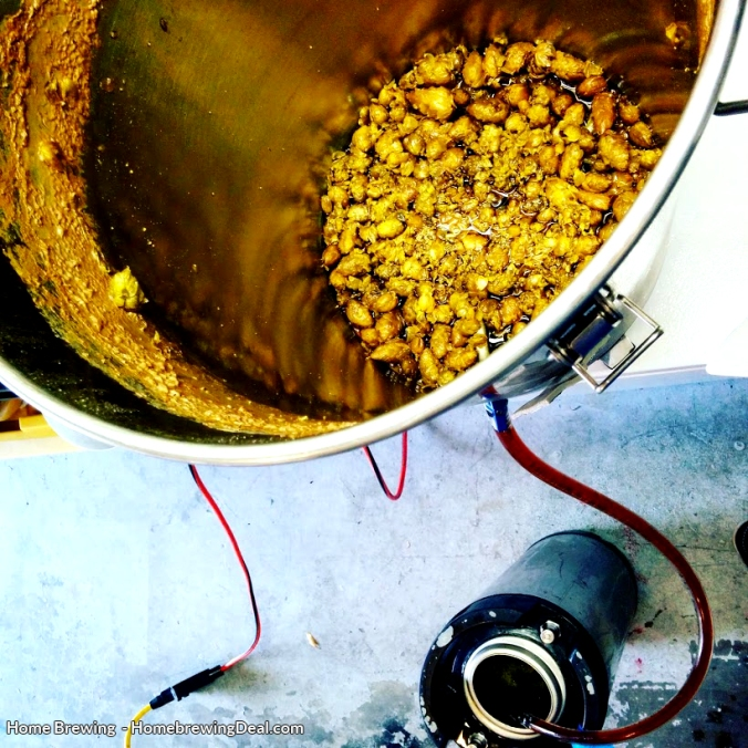 Dry Hopping Home Brewed Beer during the homebrewing process