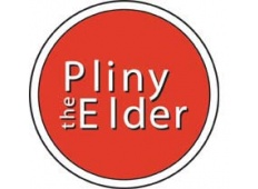 Pliny the Elder Extract Beer Kit
