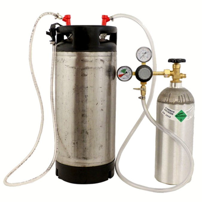Home Brewing Beer Keg System with Free Shipping for $189