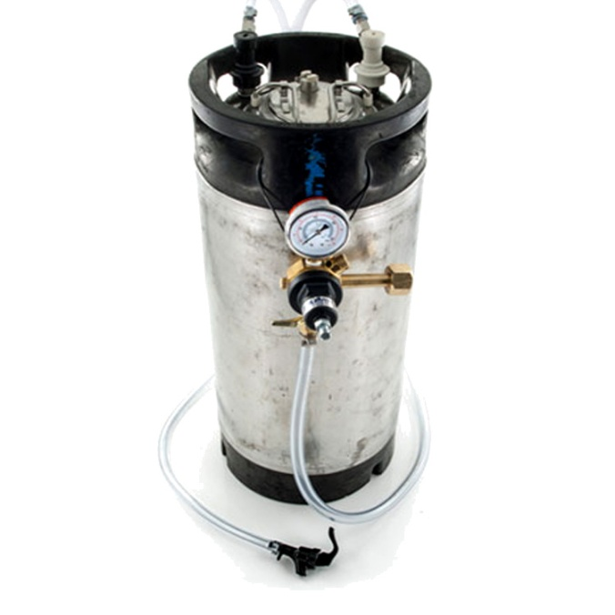 Homebrewing Keg Setup for Just $99