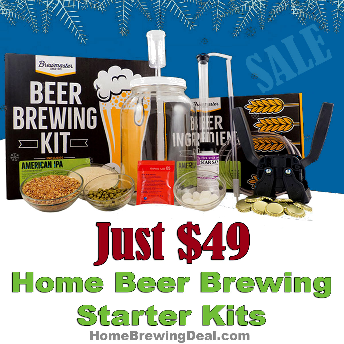 Give The Gift Of Brewing Home Beer Brewing Starter Kits