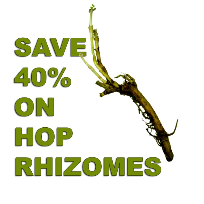 HOP RHIZOME SALE - SAVE 40%